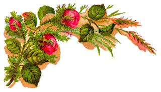 flower rose corner design illustration digital image crafting