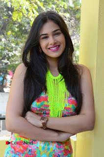 Telugu Actress Prasanna Stills in Short Dress at Inkenti Nuvve Cheppu Press Meet Stills  0133.JPG