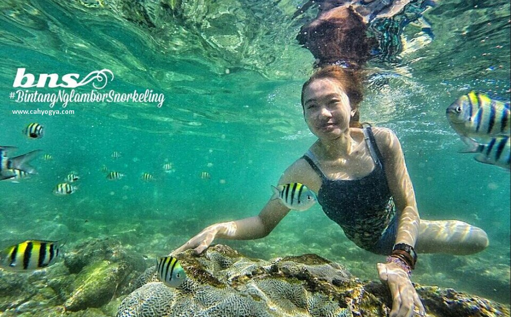 Ayo Snorkeling Di Pantai Nglambor Gunung Kidul Jogja Cah Yogya