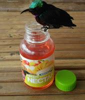 Vitamin Burung Sweety Nectar Pro Bird