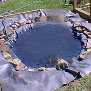 Johan alberto animales domesticos y la huerta for Hacer estanque para peces jardin