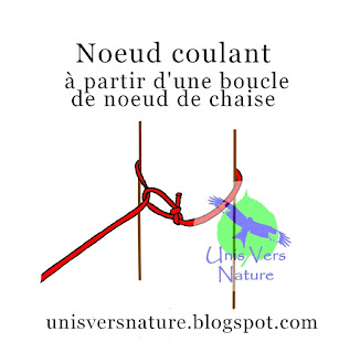 Noeud coulant, noeud de chaise