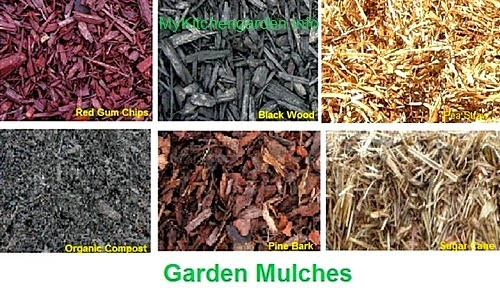 Organic mulches - compost, red gum chips, black wood, pine bark, cane sugar straw,  pea straw