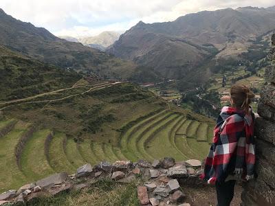 vista de las terrazas de cultivo de pisac