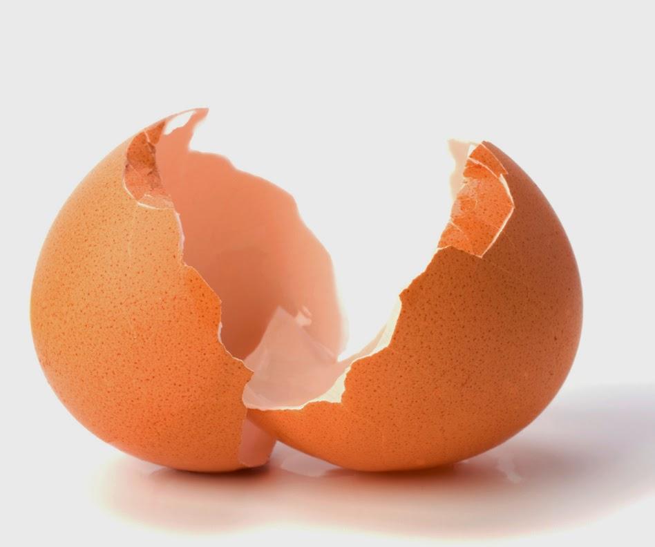 propiedades cascara del huevo