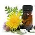 Βότανα που σας βοηθούν να τονώσετε τον οργανισμός σας!!!