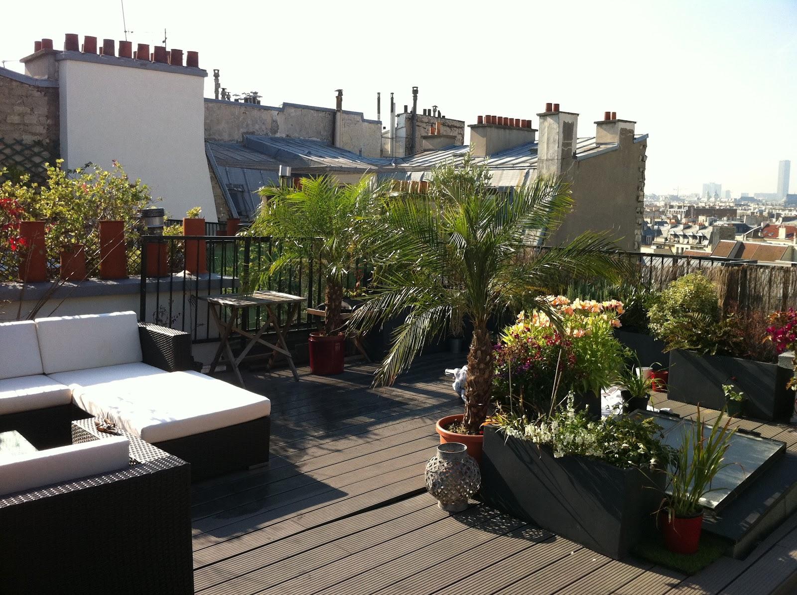 un jardin sur le toit le premier am nagement provisoire. Black Bedroom Furniture Sets. Home Design Ideas
