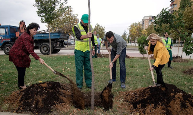 Erion Veliaj and Municipal employees planting trees