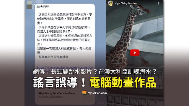 長頸鹿 跳水 影片 謠言 法國長頸鹿跳水視頻 入場費為每人100萬韓元