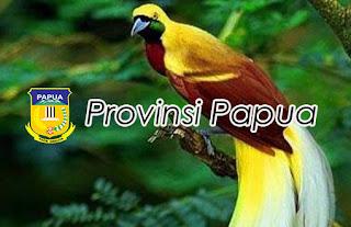 Burung Cenderawasih Asli Papua