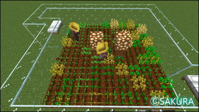 Minecraft 農民2人が働く自動畑