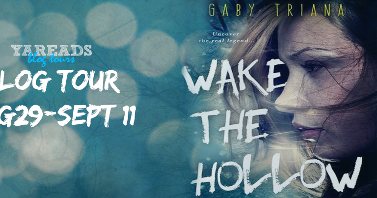 With Love For Books Book Review Wake The Hollow By Gaby border=