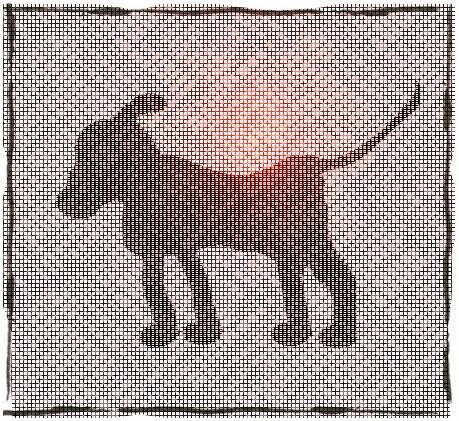 Secret Animal Code Digital Drawing