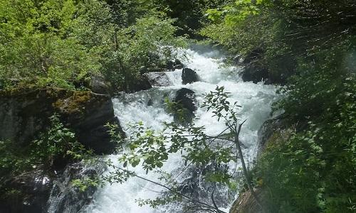 https://www.mesopinions.com/petition/nature-environnement/abandon-projet-construction-microcentrale-hydroelectrique-peisey/15898