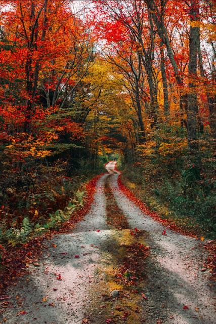http://autumncozy.tumblr.com/post/178371461393
