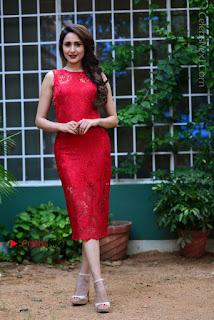 Actress Pragya Jaiswal Pos in turodu  0006.JPG