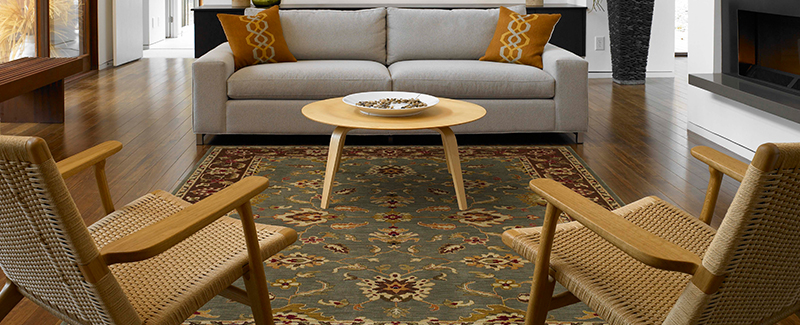 This area rug defines space and adds softness underfoot