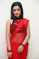 Aasma Syed in Red Saree Sleeveless Black Choli Spicy Pics ~  Exclusive Celebrities Galleries 090.jpg