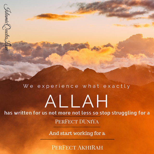 Allah Has Written for you which is good & which is bad...Allah is the best planner...So How much we try we can't change the plan of Allah, So Stop Struggling for this Temporary Duniya...Start working for a perfect Akhirah....and fix your destination to Jannah In Sha Allah