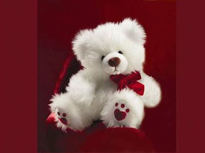 teddy bear hd wallpaper for mobile