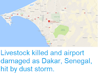 https://sciencythoughts.blogspot.com/2018/06/livestock-killed-and-airport-damaged-as.html