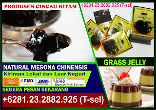Bubuk Cincau Hitam Instan, Bubuk Cappucino Cincau, Mesona Chinensis, Mesona Palustris, Mesona Chinensis Grass Jelly, Mesona Chinensis Extract, Mesona Chinensis Powder, Grass Jelly Powder, Grass Jelly Dessert
