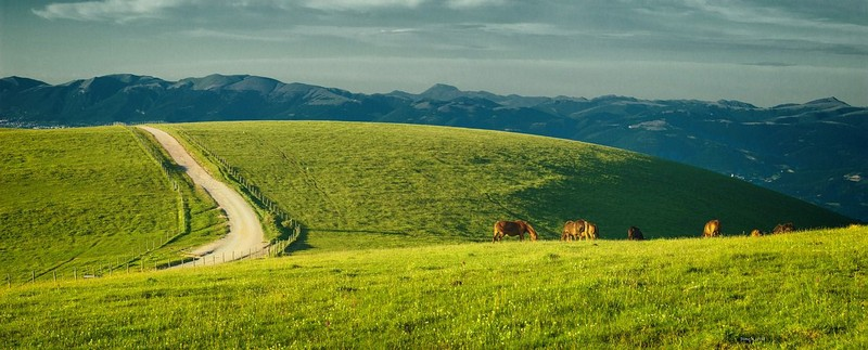 Countryside Umbria, Green heart of Italy