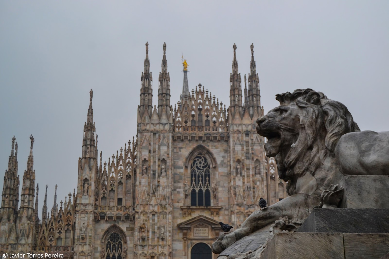 Cinco lugares gratuitos para disfrutrar de Milán | The Northwest ...