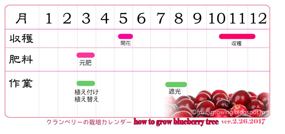 クランベリーの育て方 栽培カレンダー