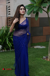 Actress Sony Charishta  Pictures in Blue Saree at Deep Mela 2016  0038.JPG