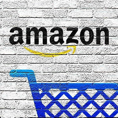 Amazon banned in India why ? Read this
