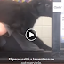 Τι έκανε ένας σκύλος που πεινούσε πολύ και έγινε viral...