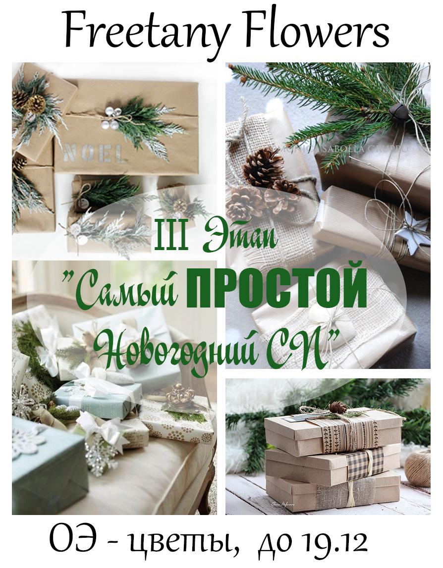 """III Этап """"Самый ПРОСТОЙ Новогодний СП"""""""