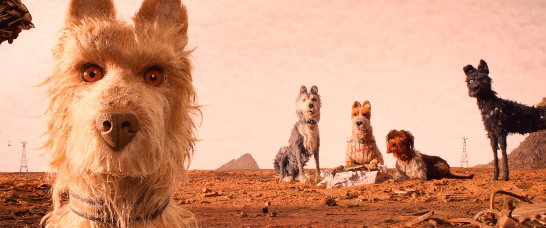 ISLA DE PERROS - los perros