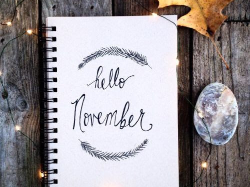 The Bests Of November