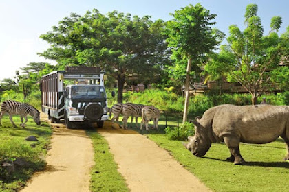 Tiket Masuk Bali Zoo Terbaru Oktober 2018