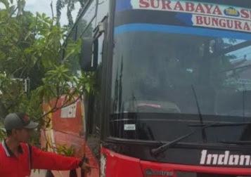 Terlalu Ngebut, Bus PO Indonesia Tabrak Pengendara Motor Hingga Tewas