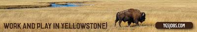 http://www.visityellowstonepark.com/jobs.aspx