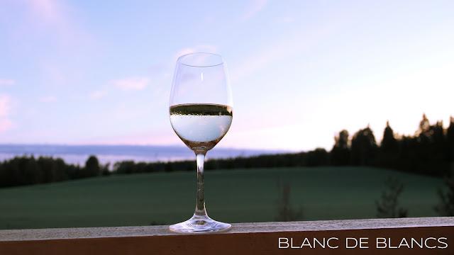 Auringonlasku ja viini - www.blancdeblancs.fi