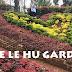 Taman Bunga The Le Hu Yang Kekinian