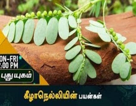 Arivom Arokiyam Episode 09 Puthuyugam Tv