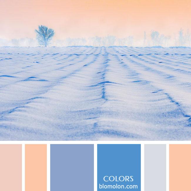 variedad_en_color_paletas_de_colores_59