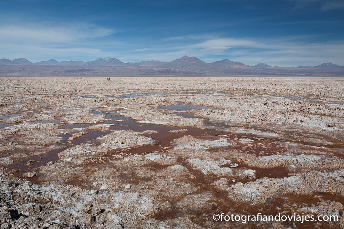 Laguna Chaxa del Salar de Atacama