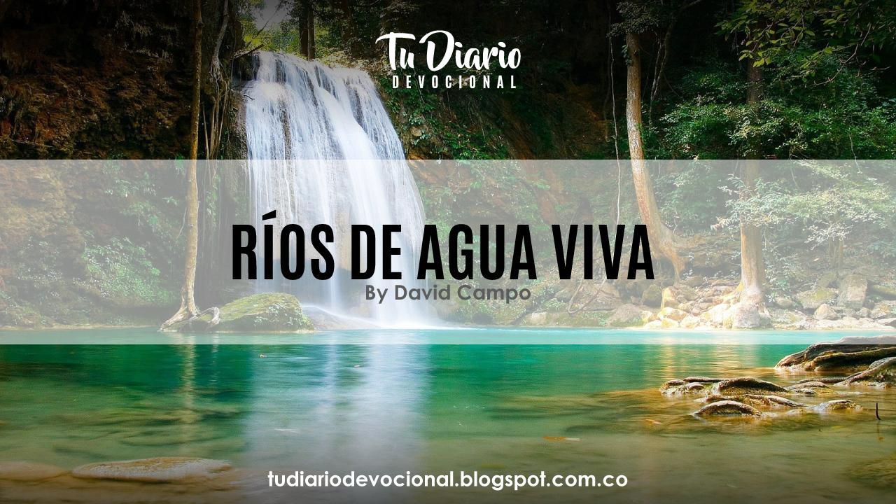 Tu Diario Devocional Ríos De Agua Viva
