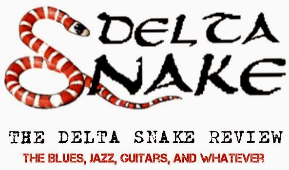 The Delta Snake Review: The True Path For Beginner Banjo Players