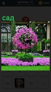 Перед окнами дома с большими окнами разбит прекрасный сад с цветущим деревом и цветами вокруг
