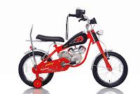 Sepeda Anak United Mogge 16 Inci