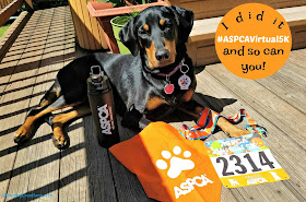 doberman mixed breed rescue dog aspca virtual 5k