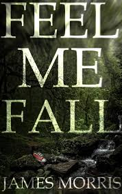 https://www.goodreads.com/book/show/34744383-feel-me-fall?ac=1&from_search=true