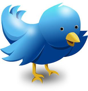 Datenschutzerklärung zu Twitter